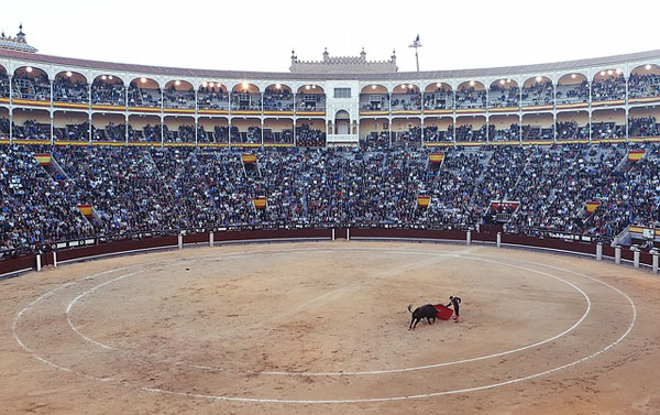 bullfight-406865_640