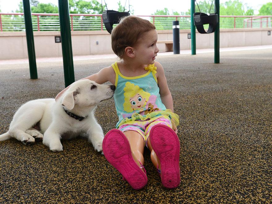 In dit hartverwarmende verhaaltje wordt een meisje zonder voeten vergezeld door een puppy die een poot mist