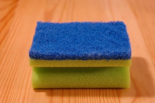 sponge-231922_640